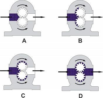 hình ảnh hoạt động của bơm bánh răng khớp ngoài